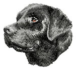 Embroidery Dog Designs